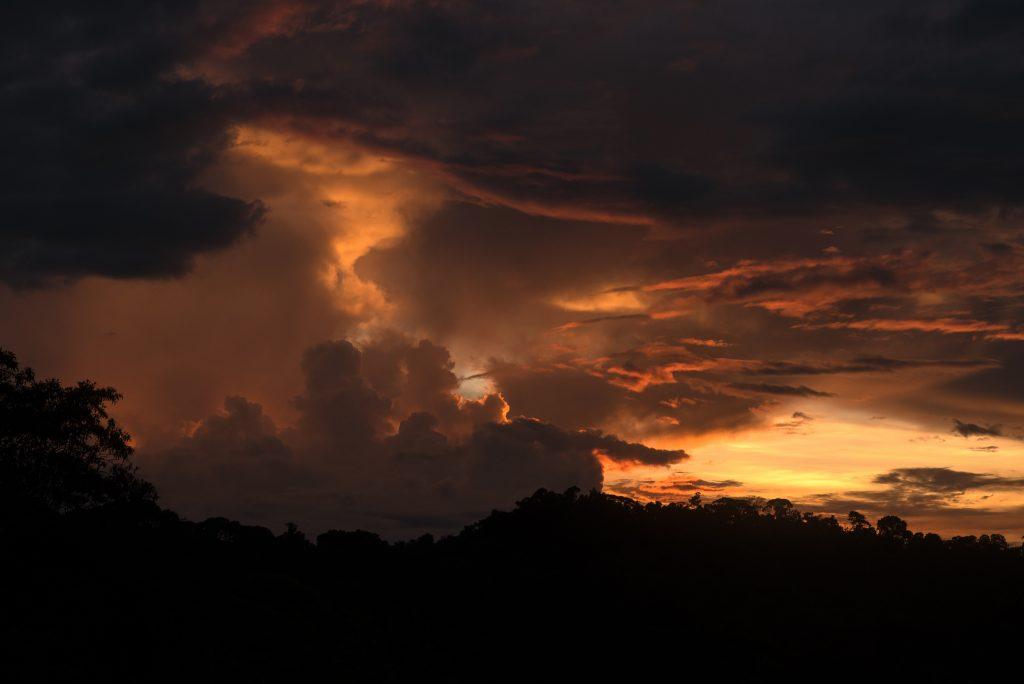 Finca-Verde-Sunset